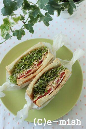生のブロッコリースプラウトをたっぷり挟んだサンドイッチのレシピです。ささみやチーズ入って、しっかり食べ応えもあります。レタスが高騰している時に、ぜひ試してみて!