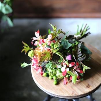 プレゼントに困ったら、花束を贈るのもいいですね。 フラワーベースを持っているかわからない場合は、一緒にプレゼントしても◎