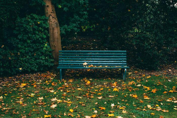 本はお家の中でだけ読むものと思いがちですが、木が風に揺れる音や鳥の声を聴きながらする読書も素敵なもの。公園や、河原のベンチなどに本を持ち出してみてはいかがでしょうか。