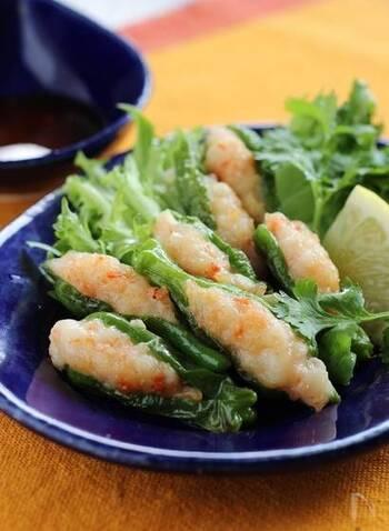 えびのすり身を詰めるとししとうの緑と相まって色合いがとてもキレイ。油でカラリと揚げることで、栄養の吸収率も旨味もアップするのでおすすめです。
