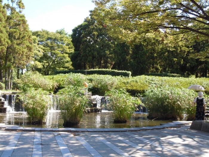 東公園は、自然に近い状態の緑が溢れる「森林公園」。四季折々の美しい木々や花、カモのいる池など、自然を感じながらゆったりとお散歩すれば、心癒されるひと時が過ごせます。