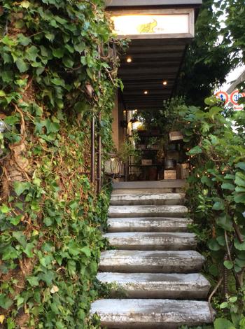 箕面にある老舗のおしゃれなカフェ。ツタの絡まる壁に木製の階段…緑たっぷりの外観がすてきです。