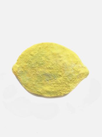 レモンといえば、このシルエット。すぐに答えに結びつくかたちだけど、色や質感はといえば、案外複雑。あのゴツゴツ感、艶やかさと影のある色合い、ざらっとした手触り。見れば見るほど、掴めない。現実のような夢のような、レモンの誘惑。