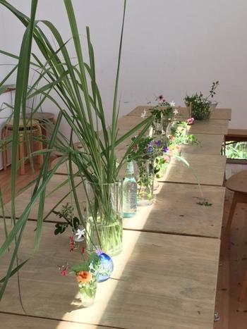 青山のスパイラルなど、関東でも活動を広げ、作品展示やワークショップを開催される松尾郁子さん。 写真は大阪のアトリエで開催されたワークショップ「花の色しりとり」から。季節の花々が一列に並んで...一体何が始まるのでしょう?