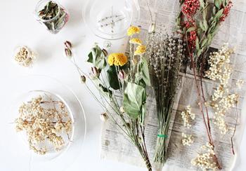 ドライフラワーはお花屋さんでブーケになっているものを購入するほか、自分で作ることもできます。フレッシュな状態から徐々にドライになっていく過程を眺めるのも、面白いものです。