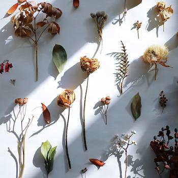 どんなお花を組み合わせるか、どんな大きさにするかで、全体の雰囲気も違ってきます。すこしくすんだ色合いは、どんなお花でも馴染みやすく、フレッシュフラワーよりも多彩な組み合わせを楽しむことができますね。