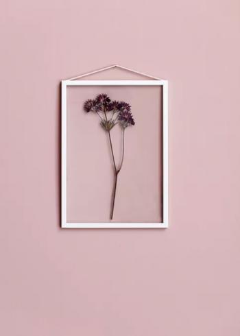 まるで押し花のような面白さを感じるフレームの中のドライフラワー。透明なガラスで押さえるので、壁の色がそのまま背景としてあらわれるのも面白いですね。