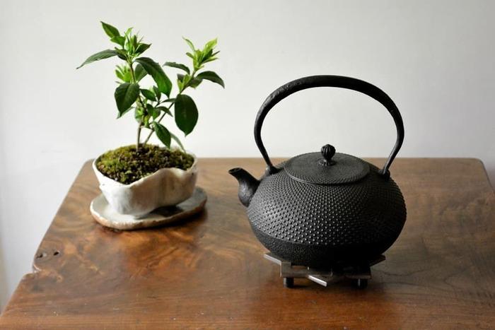 日本の生活の中で育まれ、今もなお大切に受け継がれている「伝統工芸品」。 職人さんが丹精込めて作り上げる伝統工芸品には、機械製造では出せない手仕事ならではの温かみや素朴な風合い、独特の味わい深さがあります。