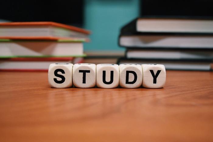 毎日が楽しくなる大人の勉強法って?好きなことを突き詰めて成長しよう♪