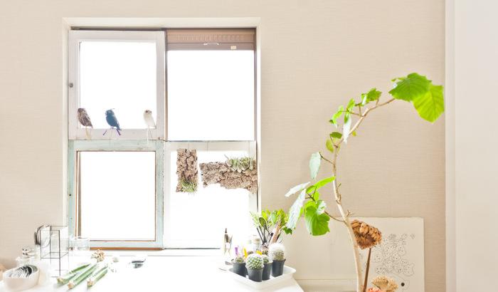 窓際のちょっとしたコーナーにも、植物たちがいっぱい。頑張りすぎず、人や植物や動物が心地良く暮らせるアイデアを詰め込んだお部屋です。その全貌に興味のある方は、ぜひリンクをクリックしてみてくださいね。