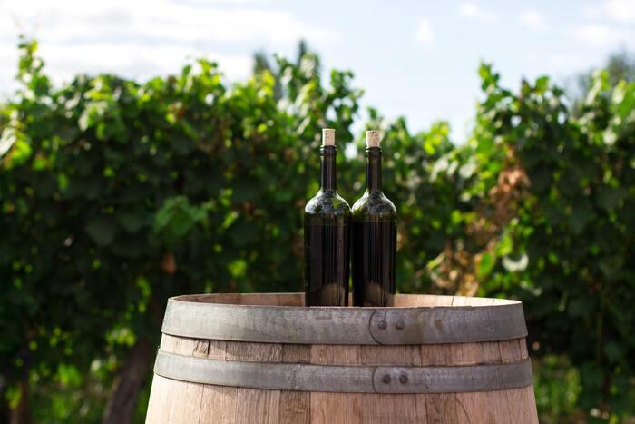 発酵食品の歴史は古く、最古のものは約8000年前のコーカサス地方のワインだとか。イランでも約7000年前にワインを作っていたようです。