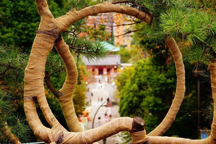 """【""""月の松""""が描く輪の中には、不忍池の「辨天堂」がおさまる仕掛けになっている。】"""