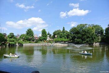 目黒区にある碑文谷公園は、憩いの場所として親しまれています。動物たちとふれあったり、ボートに乗ったり、思い思いの楽しみ方ができますよ。