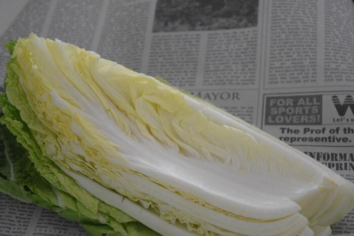 キャベツと白菜、どちらも漬けた後もシャキシャキの食感が楽しめます。特に白菜はクセがなく、みずみずしいのでぬか漬けに最適。ぬか漬けの野菜の中でも人気のある食材です。