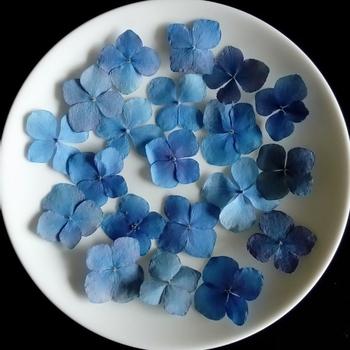 花びらだけをお皿に載せると、繊細でシックな印象に。