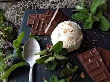 根強いファンが多いチョコミントアイス。手作りすると好きなだけ食べられますね♪ミントの爽やかさで後味さっぱりです。