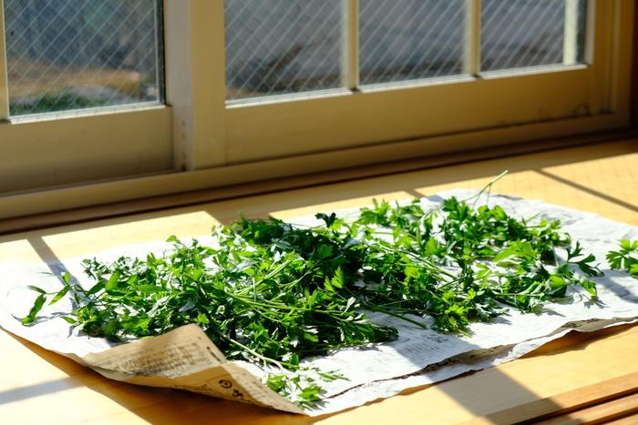 乾燥させれば長期保存できるよ!ドライハーブを作ろう♪(料理レシピ付き)