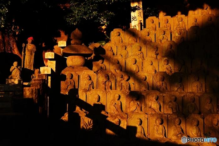この坂にある大円寺に入ると、520体にものぼる石仏像が目に入ります。これは、先ほど述べた行人坂火事の追悼のために、約50年もかけて作ったと伝えられているもの。一つ一つの石仏に個性があり、じっと見つめているとなんだか不思議な気持ちになってきます。