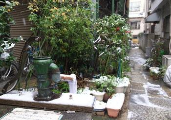 今では珍しい手汲みの井戸が残る街並みには、文豪の史跡がたくさんあります。日本文学好きにはたまらないお散歩スポットです。