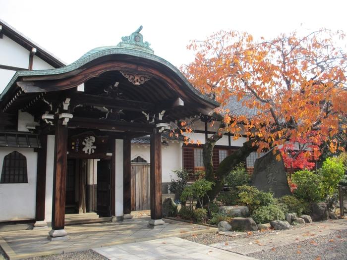 江戸時代から続く由緒あるお寺「南泉寺」。こじんまりとしていますが、境内の庭園はよく手入れされており、参拝者を楽しませてくれます。秋には紅葉も少しあり、季節を感じさせますね。