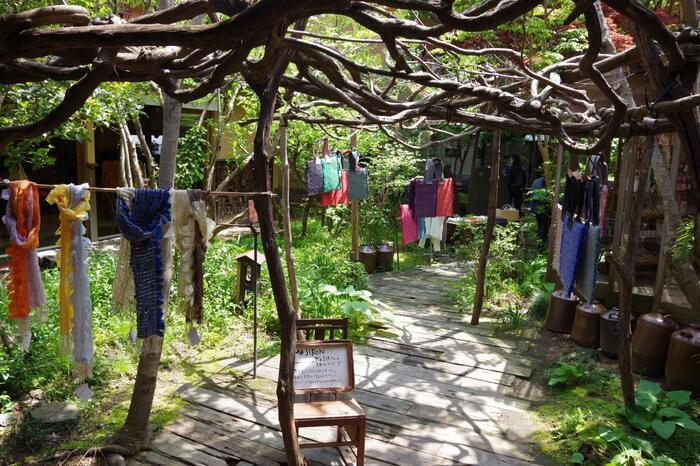 訪れたなら、緑豊かな中庭にも足を運んでみてくださいね。