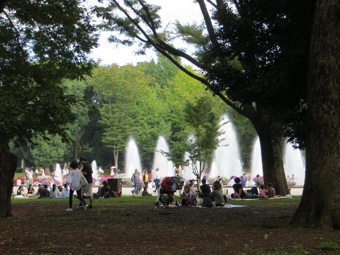 """園内の銀杏や楠、欅といった木々の豊かな緑、種々様々の桜も素晴らしいですが、""""水辺の景色""""も魅力的です。 【木々の緑と水の景観が爽やかな「噴水広場」では、週末や連休になると様々なイベントが行われ、賑わうが、広場から一歩、西へそれればゆったりと過ごせる。(10月初旬撮影)】"""