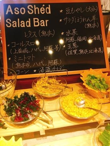 新鮮な野菜を揃えたサラダバーも。朝から新鮮な野菜を食べて、栄養をチャージできます。