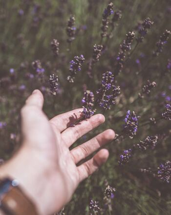 """成功した人、裕福な人、幸せな人に比べて、自分はなんてみじめなんだろう。長い人生において、そう感じてしまうことも時にはあるかもしれません。ただ、人生とは現実そのものではなく、""""自分の感じ方""""によって決まるものです。 「自分は不幸でみじめだ」という前提で世界を見ると、本当にそのような情報しかキャッチできなくなってしまいます。「今の自分で十分に満たされている」と分かることが、必要以上に傷つかないコツです。"""