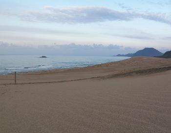 ここで、さりげなく、知る人ぞ知る情報を。鳥取砂丘から海を望むと・・・クジラ!? まるで魚のような形をした島を発見することでしょう。  これは、海士島(あもうじま)。地元ではクジラ島と呼ばれて親しまれています。  島なのに、海を泳いでいる大きな魚のよう。こちらの穴場的写真スポットも、お見逃しなく。