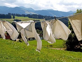 きれいになった洋服は、しっかりと乾かしてからしまうことが大切。湿気が残っていると、ニオイやカビの原因になってしまうこともあります。衣替えをする日は天気との相談も忘れずに!