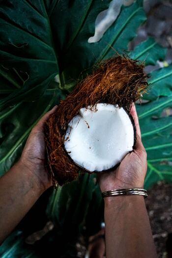 ココナッツやパーム由来の中鎖脂肪酸だけを取り出した油のことを「MCTオイル」と言います。中鎖脂肪酸油は脂肪酸の中でも「飽和脂肪酸」に属するオイルで、消化・吸収が早いという特徴から、さまざまな健康効果が期待されています。