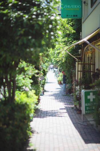 ふらり街歩き【東京・根津】で見つけた素敵なカフェ