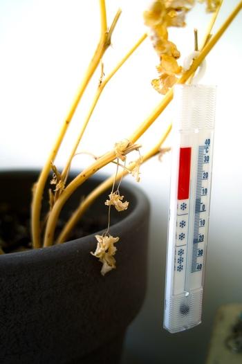 衣替えは、5〜6月の春と、9〜10月の秋に行います。どちらも連休などを活用すると、無理なく行えますよ。とはいえ、時期だけではなく気温もポイント。20度前後の日が多くなった、と感じたら衣替えシーズン到来のサインです♪