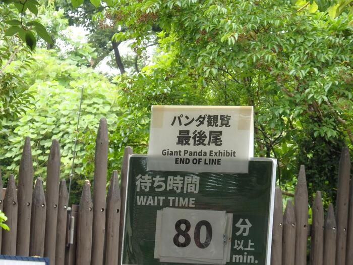 美術館に、博物館。動物園に、科学館…  「上野恩賜公園」は、日本屈指の文化施設が集まっています。季節折々にイベントがあり、国宝・秘宝は公開され、とびきりの展覧会が開催されます。鑑賞、観覧、見学も、心身ともに気力溢れる時は、楽しいものですが、何となく出掛ければ、ただ人の熱気にあたって疲れるばかりです。【2018年シャンシャン満1歳の誕生日当日の上野動物園観覧列】