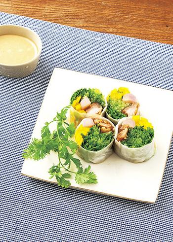 生春巻きは海老の印象が強いですが、肉の生春巻きも美味しいんです。この生春巻きは照り焼きチキンと新生姜を使っています。大きめにカットした新生姜の辛味と食感がいいアクセントに。