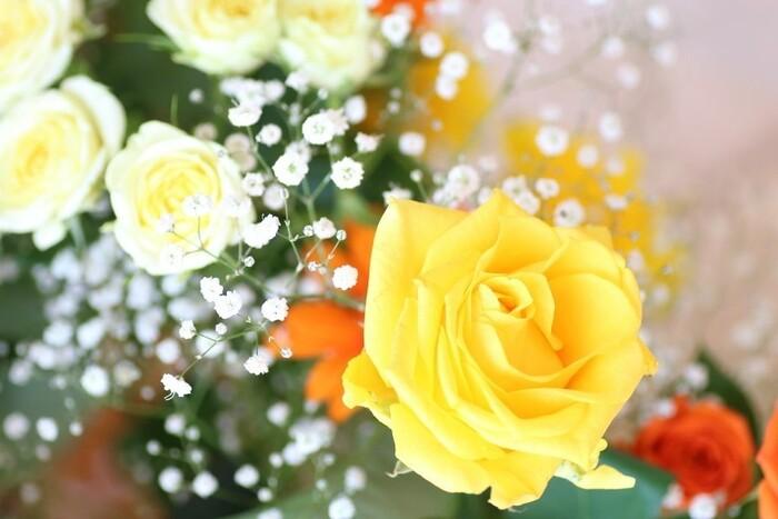 バラは古くから「愛」を象徴して花のため、恋愛に関する花言葉が多いです。花の中でも花言葉がかなり多く、とても奥深い花でもあります。 黄色だけは、「友情」と言う意味を持つ一方で「嫉妬」もあるので、恋人には向いていないかもしれません。 バラは花束はもちろんですが、永遠に枯れることの無いブリザーブドフラワーやバラの雑貨も女性に喜ばれますよ。