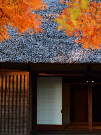 残暑が次第に落ち着き始め、周囲の自然がすこしずつ秋色に。やっとお出かけしやすい時期になりました。  次のお休み、ちょっとのんびりしたいなぁ・・・と思ったなら、ぜひオススメしたいのが、「古民家の宿」に泊まる旅。