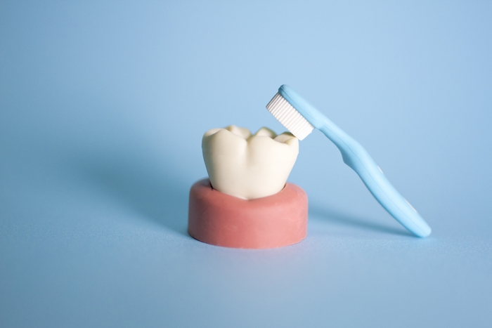 最後に「基本の歯の磨き方」も確認しておきましょう! 歯磨き粉を適量乗せ、ブラシの先を歯の表面にしっかりとあてるように磨いていきます。このとき、優しい力で小刻みに動かしていくのがキレイに磨けるポイント。すすぎは、歯磨き粉の有効成分を流さないように軽く1回程度でOKです。