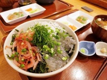 """「キチプラス」と言えば、もちろん""""しらす丼""""!駿河湾用宗産の新鮮なしらすがたっぷり♪人気の三色丼では、ゆでしらす、生しらす、ゆで桜エビが一緒に楽しめます。"""