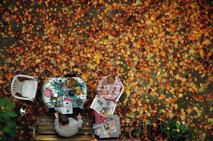 秋においしいフルーツや野菜を使ったスイーツレシピ、作りたいものは決まりましたか?  この季節、どれも比較的手に入りやすい食材ばかりですので、ぜひ手作りスイーツで秋を楽しんでみてくださいね!