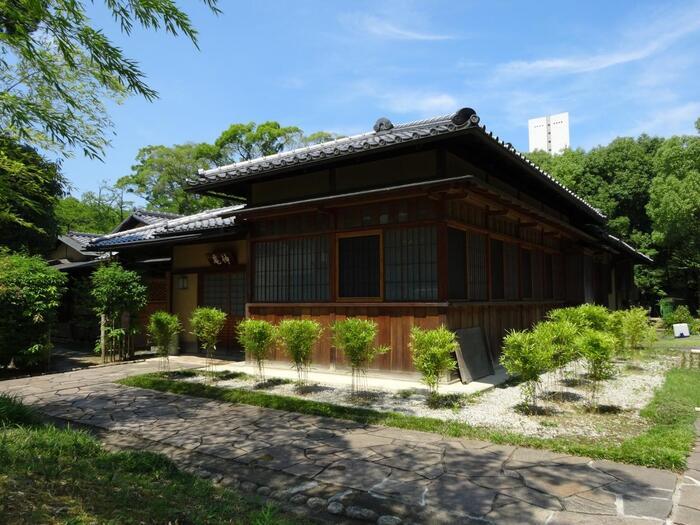 堺といえば「茶の湯」の千利休のふるさとですね。大仙公園内にある茶室「伸庵」は、国の登録有形文化財です。  昭和4年に建てられた、数奇屋普請の名匠・仰木魯堂の手になる茶室で、東京芝公園から寄贈され移築したものなのだそう。