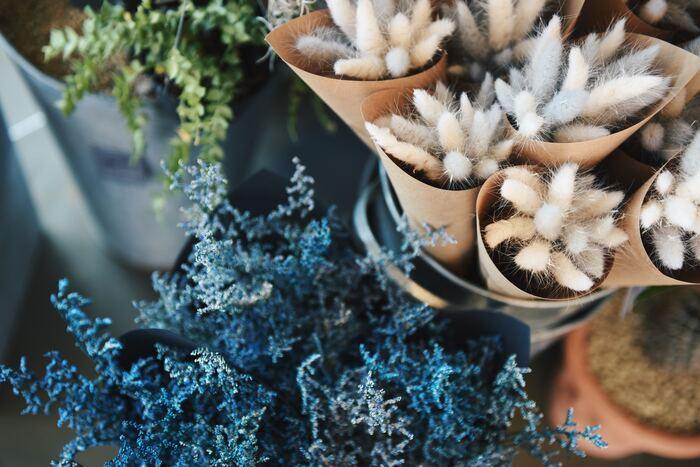 気温が下がり、街の中でもお庭でも咲くお花が減ってしまう秋から冬の季節。お花好きにはちょっと寂しい季節でもありますよね。そんな秋冬シーズン、今年はドライフラワーを楽しんでみませんか?ドライフラワーは寿命も長く、お家を留守にしがちの方や、お花のお世話が苦手...なんていう方にもおすすめ。