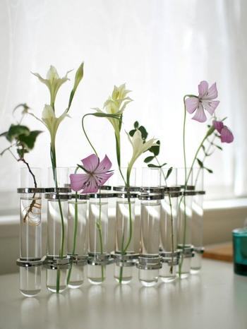 こちらは試験管のような一輪挿しが9本繋がっていて、お花を一本ずつ挿していけるタイプ。いろいろなお花を一緒のフラワーベースに活けるとバランスが悪くなってしまうこともありますが、これだとそれぞれを引き立たせることができますね。