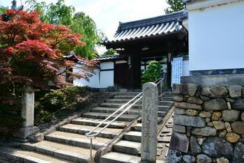 「虹の苔寺」と呼ばれる「光明院」。東福寺の塔頭(たっちゅう)寺院です。塔頭とは脇寺や小寺院という意味で、この光明院以外にも穴場スポットであることが多くなっています。  東福寺の塔頭の一つですが東福寺からは徒歩5分ほど離れているので、最寄駅は東福寺駅ではなく京阪・鳥羽街道駅です。