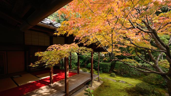 日本最大の禅寺である妙心寺。その広大な境内には40あまりの塔頭があり、その一つが桂春院です。