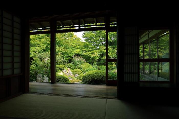 和の情緒をゆったりと堪能できる穴場寺院。紅葉の時期には少し人が増えますが、それでも他の有名寺院に比べれば落ち着いて紅葉を鑑賞することができますよ。非日常を味わえる美しい庭園を楽しんでくださいね。