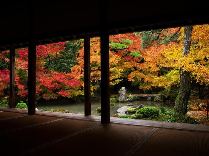 紅葉の時期には楓が鮮やかに色づき、水面に映ります。見頃が長く続くのもこのお寺の特徴です。