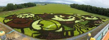生産地と消費者のつながりを深め、消費者の皆さんに様々な視点から農業に興味・関心を持ってほしいと始まった「田んぼアート」。会場には見晴らし台があり、田んぼアートを一望できます。