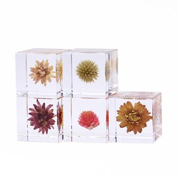 職人の手によって、本物の植物がアクリルキューブに閉じ込められている「sola cube(ソラキューブ)」。ずっと眺めていたくなる神秘的な美しさで、ちょっと変わったフラワーギフトに。男性にもおすすめのプレゼントです。