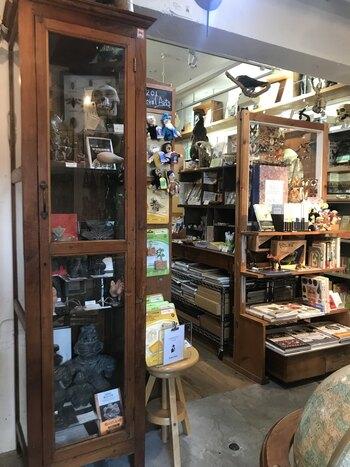 店内には、選りすぐりの古書や動物剥製などの標本、研究生活に便利な道具が所せましと並んでいて購入も可能です。博物館好きの方なら、ひとつずつじっくり眺めたくなるものばかり。